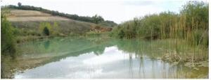 Balsa de regulación compatible con función de humedal lleno de vida (2011) ECHASA