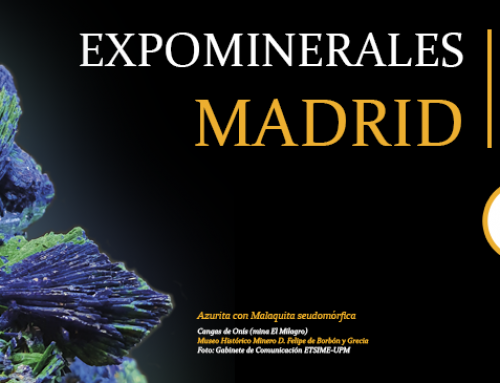 Expominerales 2020